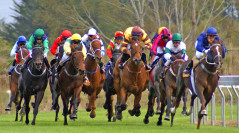 Understanding the Types and Classes of Horse Races